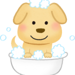 dog-taking-bath